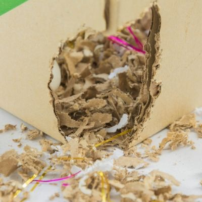 A great tip for real estate pest control is to check for signs of rodent infestations like chew marks on cardboard boxes where mice make their nests.