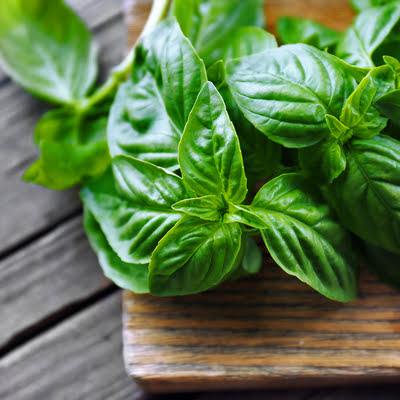 A clever way to boost your pest control is by planting pest-repelling plants like basil.